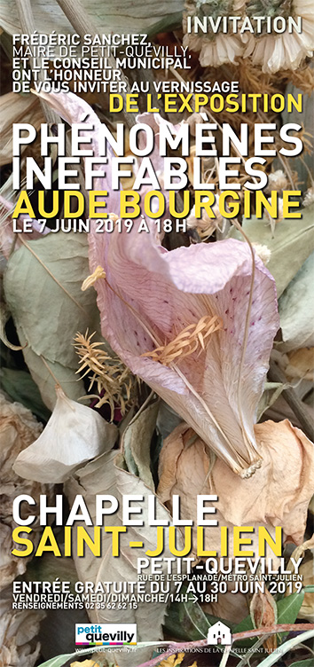Aude Bourgine
